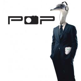 POP17 radio